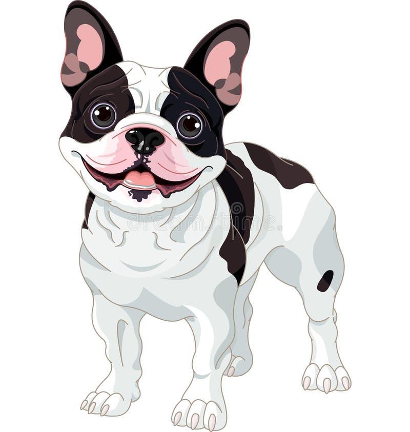 French bulldog. Illustration of cartoon French bulldog