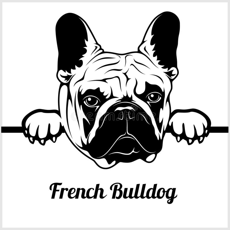 French Bulldog - Peeking Dogs - - breed face head isolated on white vector illustration