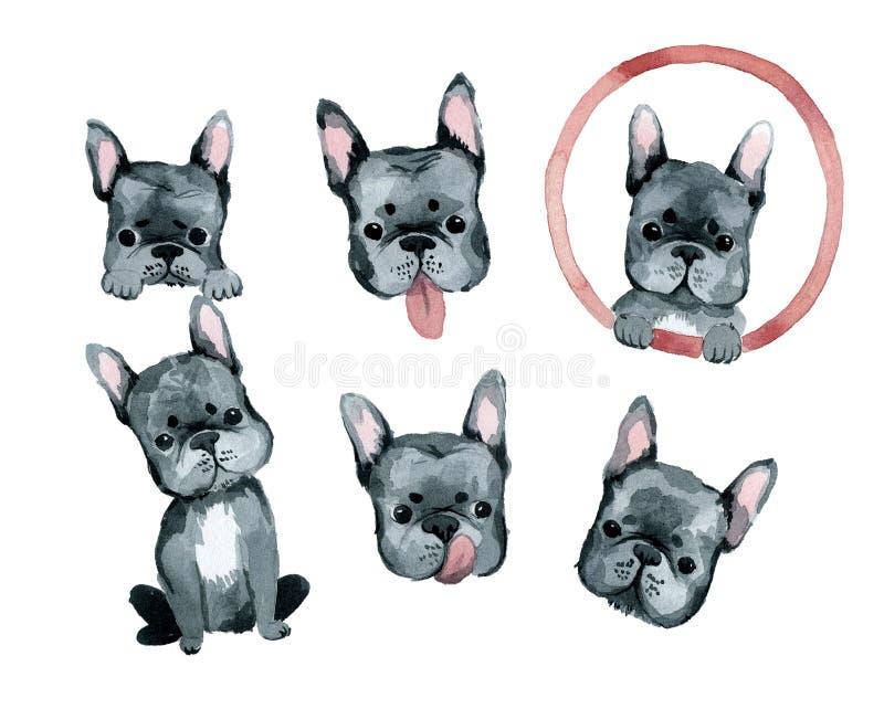 Cute dog french bulldog portrait royalty free illustration