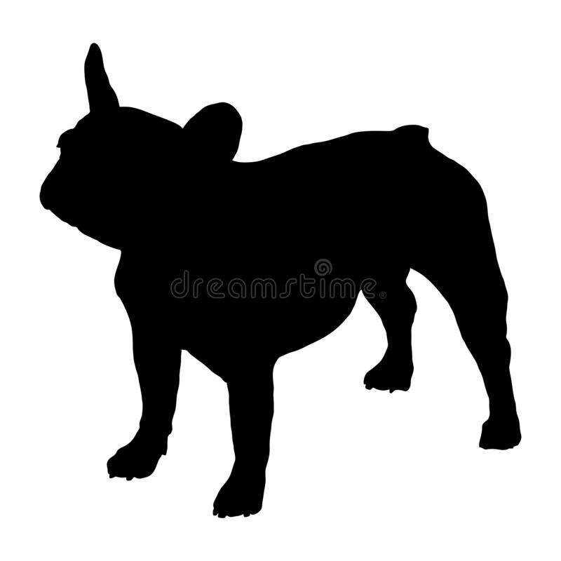 Free French Bulldog. Silhouette Royalty Free Stock Photos - 134764558