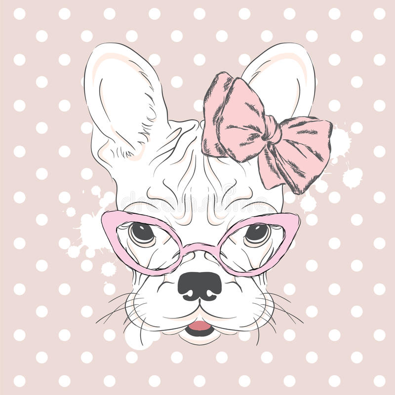 French Bulldog in the vector. Pedigree dog. The puppy with a bow. Girl. royalty free illustration