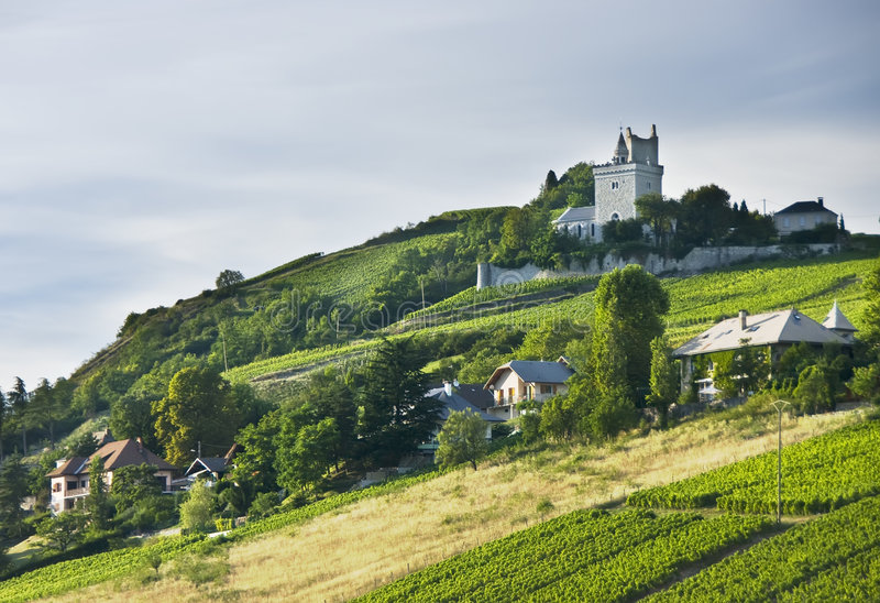 French chateau and vineyards. A French chateau overlooking green vineyards stock photo