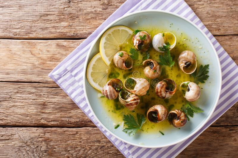 French cuisine: Escargot with butter, herbs and garlic close-up royalty free stock photography