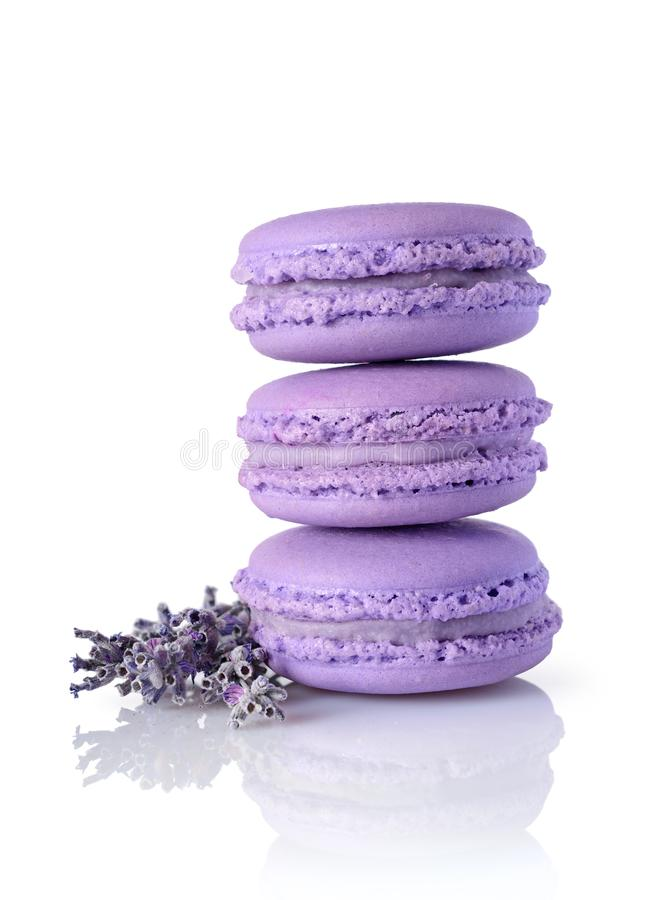 French dessert. Sweet lilac macaroons or macarons with lavender flavor and flower. On white background stock photo
