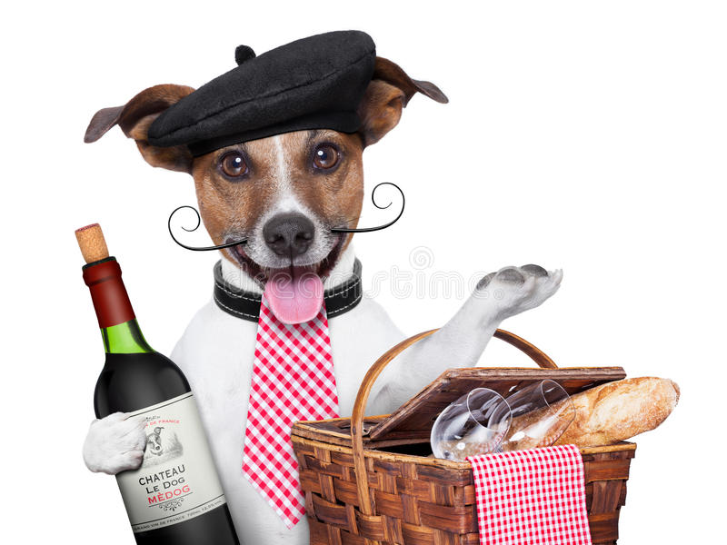 French dog. With red wine and Picnic basket