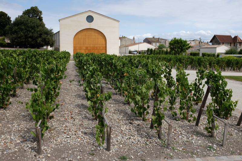 French famous winery. Photograph of a famous french winery of the medoc region royalty free stock photos