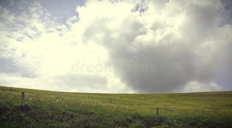 French field royalty free stock photos