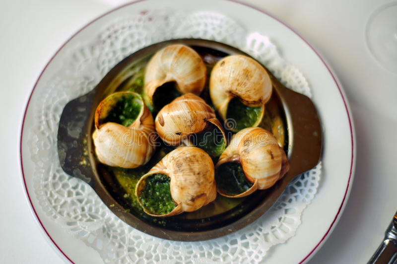 French Food on a Plate, 6 Snails,. Paris France, French Brasserie Restaurant, Detail, French Food on a Plate, 6 Snails, PS-49853 royalty free stock image