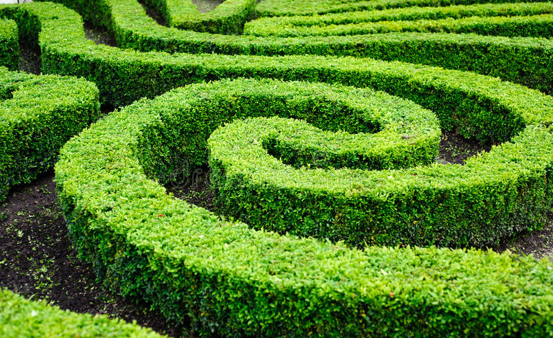 French Formal Garden In Paris Stock Image - Image of beautiful ...