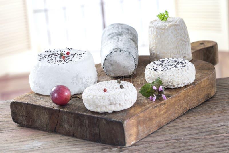 French fresh white goat sheep cheese stock photos