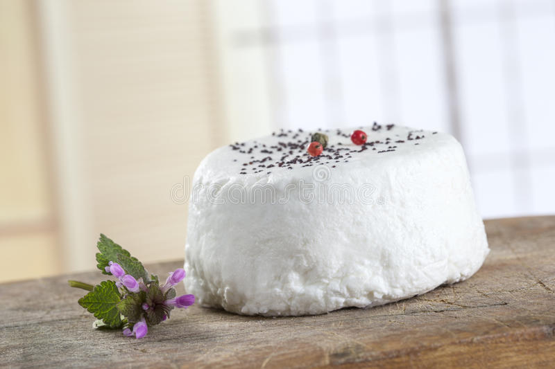 french goats cheeses on white background royalty free stock photo