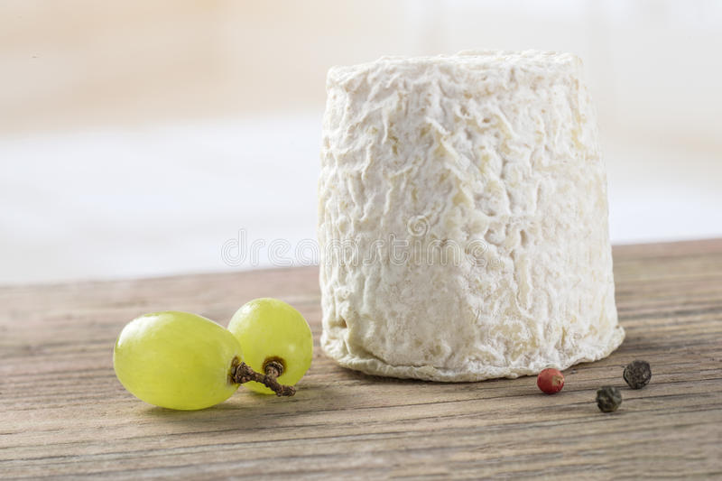 french goats cheeses on white background stock photography