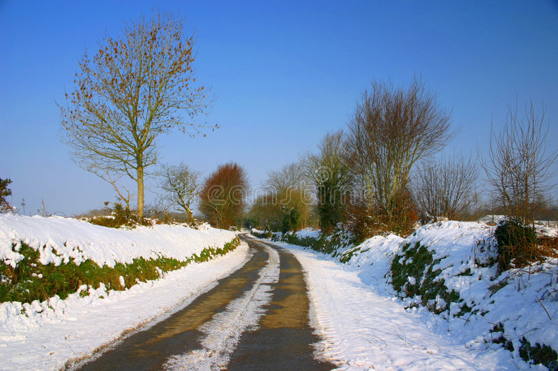 French Lane. This a snow covered french lane in the middle of winter royalty free stock photo