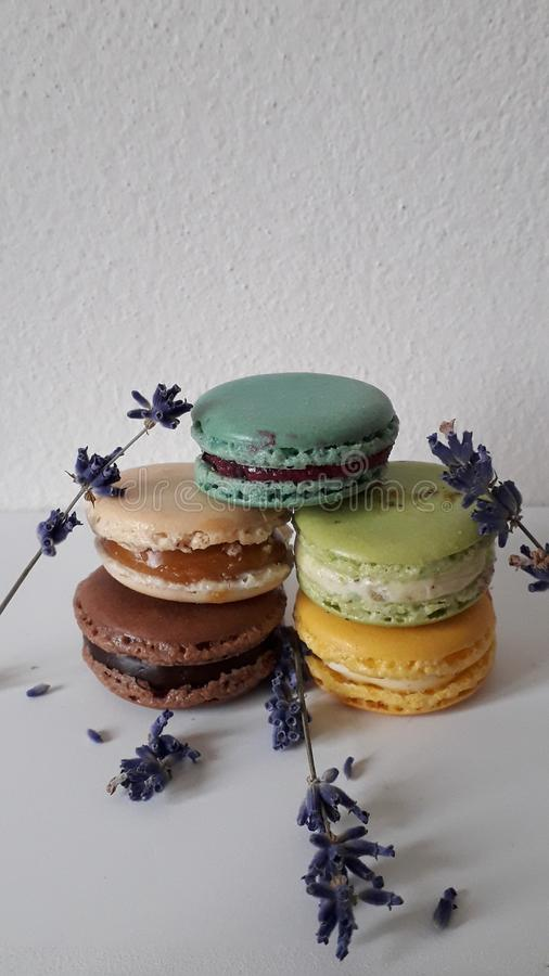Mix macarons decorated of levander flowers stock photography