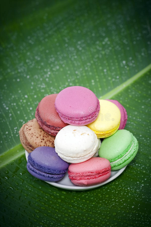 Download French Macaroons stock photo. Image of food, heap, cuisine - 13067360