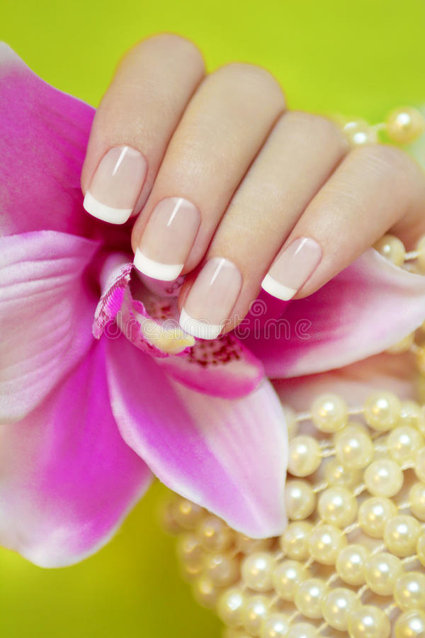 French manicure. stock photography