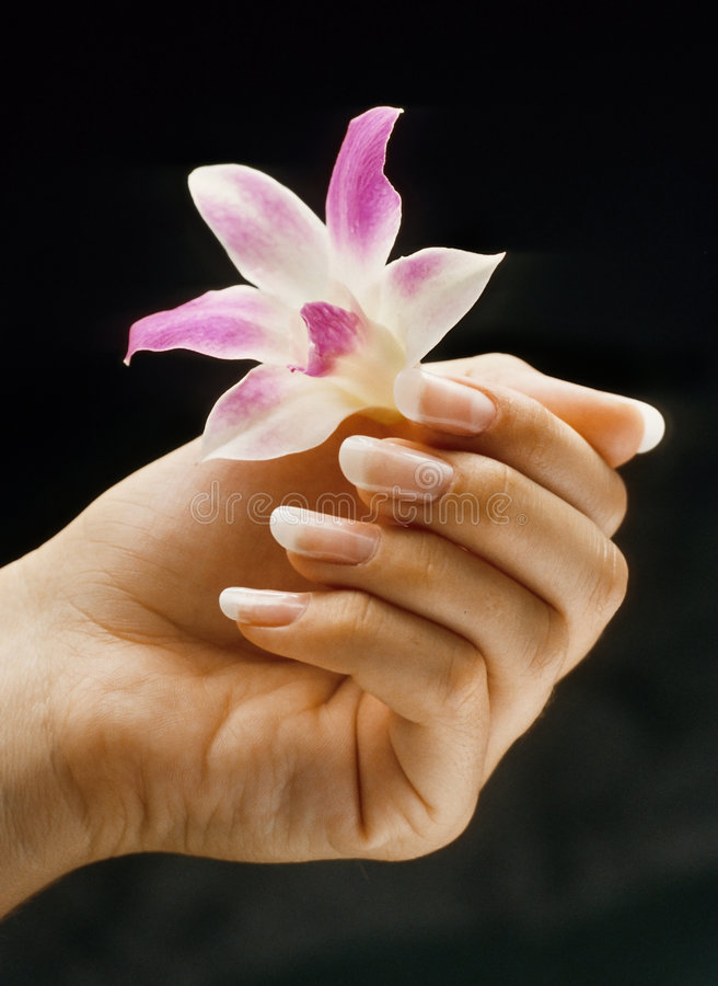 French Manicured Nails Royalty Free Stock Image
