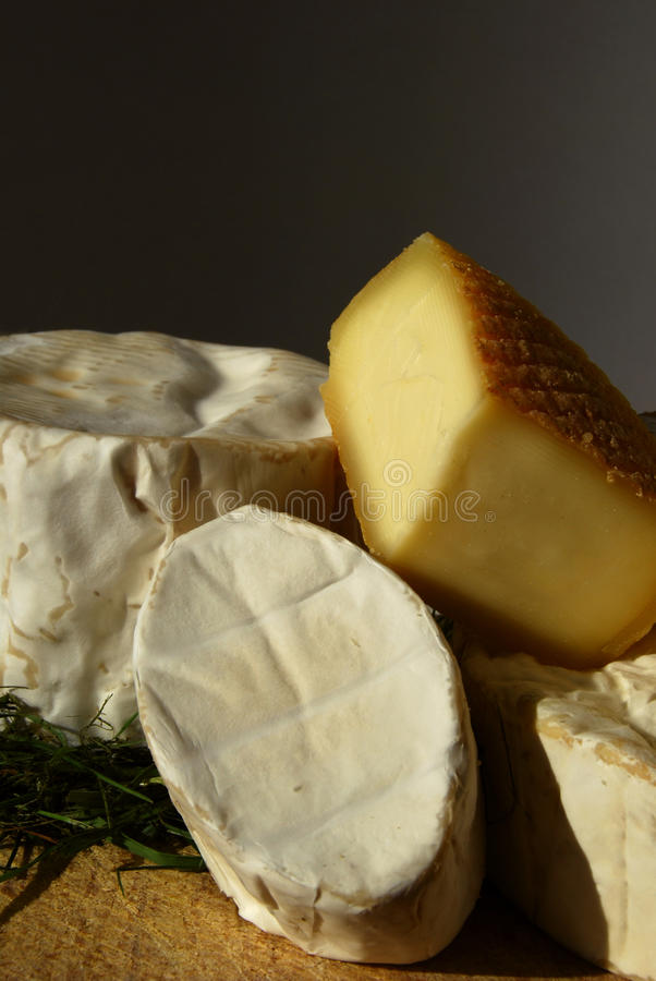 French rind cheese selection stock images