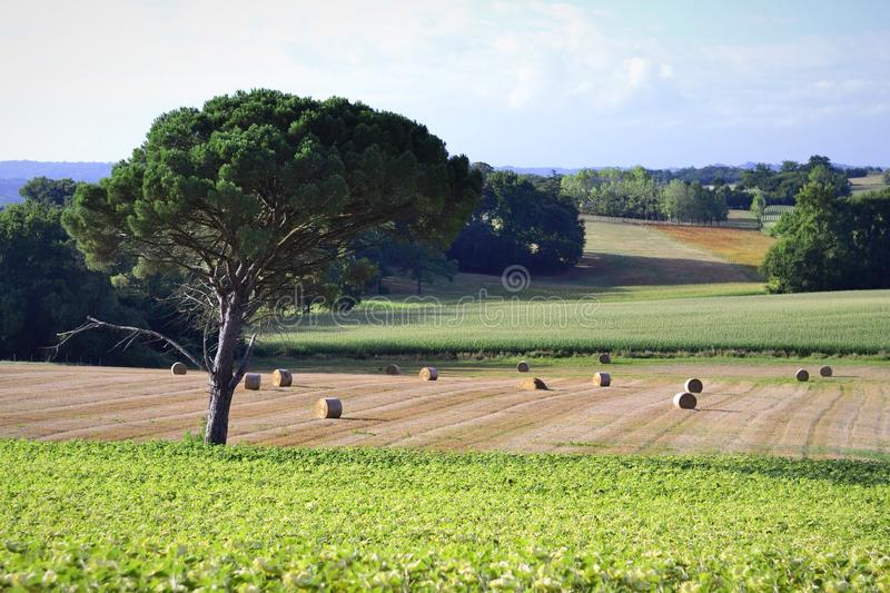 French rural landscape. Farmland and woodland with distant views tree and agriculture in foreground stock photography