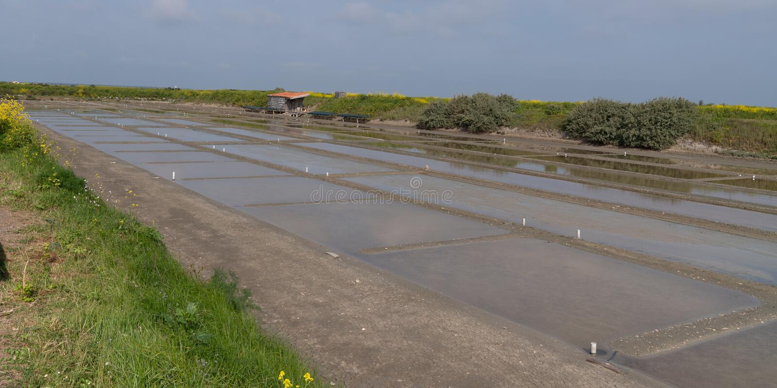 French salt marsh in Guerande France. A french salt marsh in Guerande France royalty free stock photos