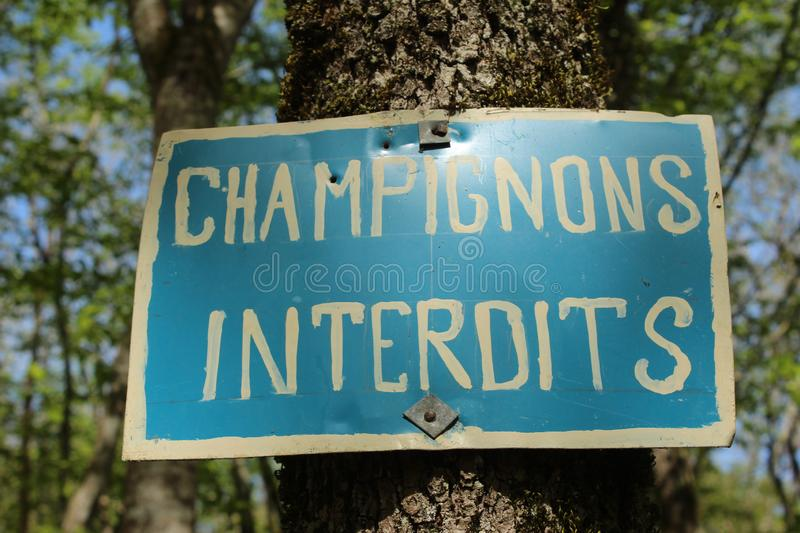 French sign declaring Champignons Interdits. Or mushroomers prohibited, written in white on a blue rectangle royalty free stock photos