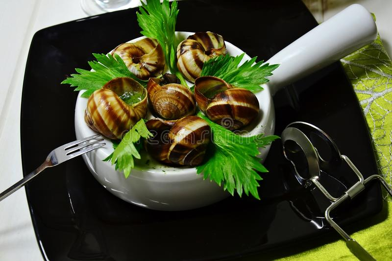 French snails stock image