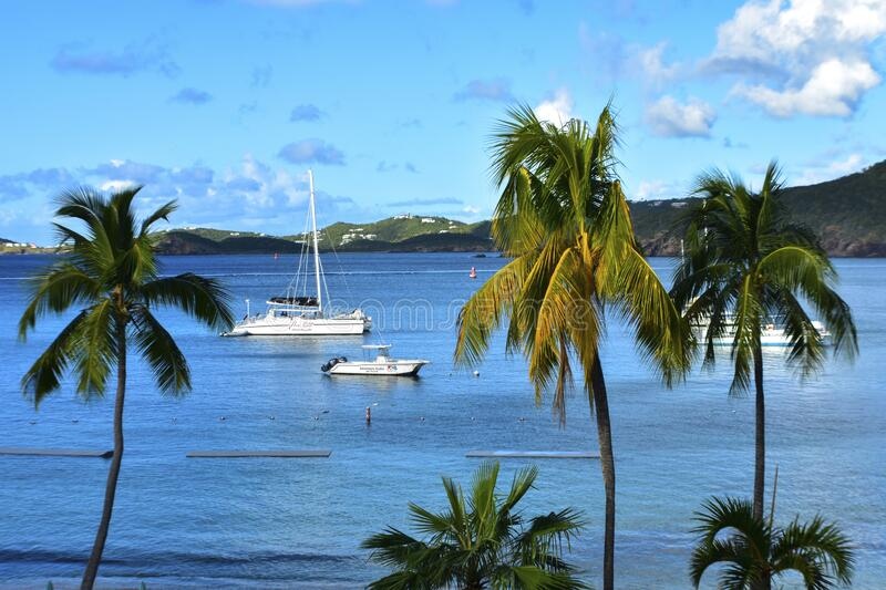 Frenchman`s cove, St. Thomas, United States Virgin Islands. Caribbean Sea Coastline, Vacation Destination, Beach With Palm Trees, Tropical Travel, Scenic stock photo