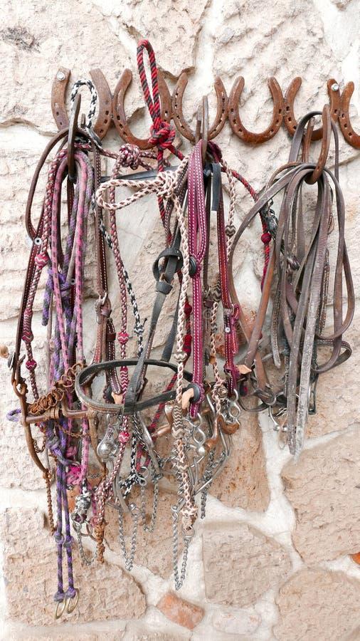 Frenos y jaquimones del caballo en una pared imagenes de archivo