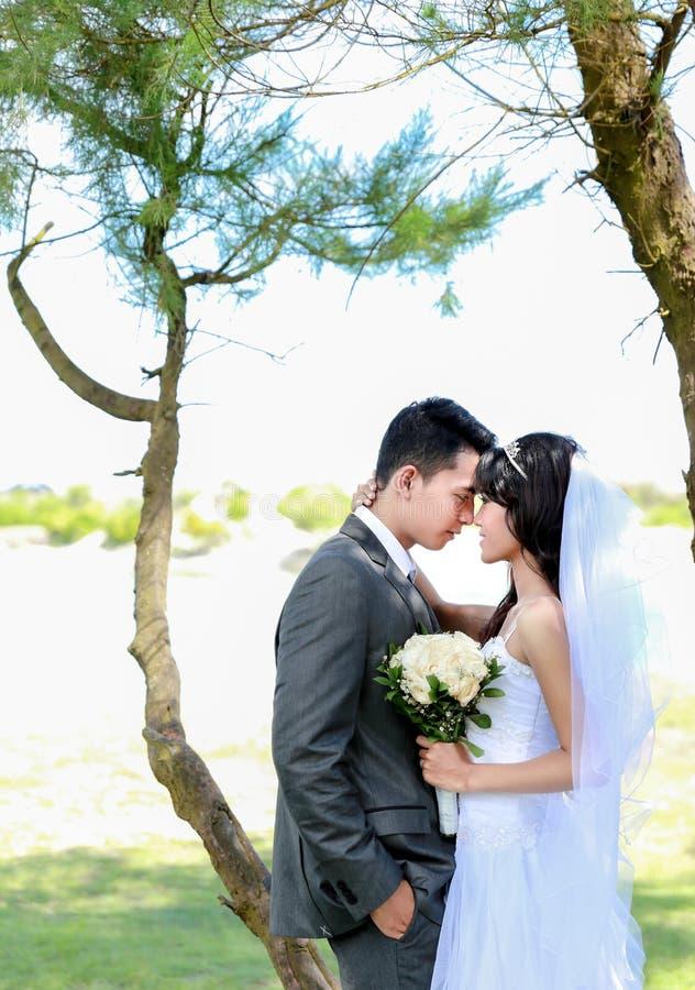 Frente conmovedora de los pares románticos del recién casado foto de archivo