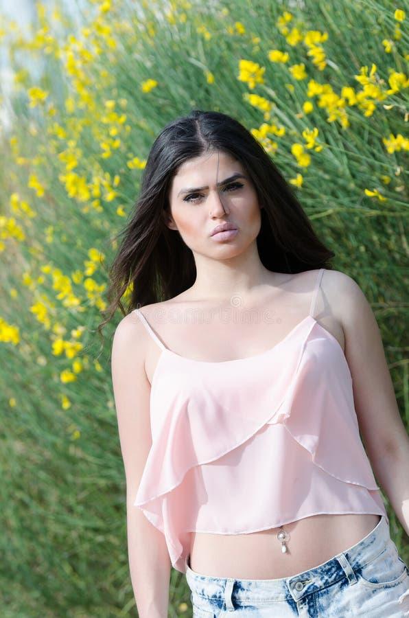 Frente permanente del modelo griego lindo del arbusto amarillo fotos de archivo libres de regalías