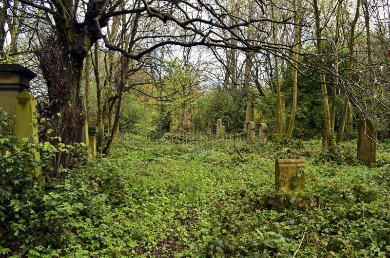 Frequentierender Friedhof und gespenstisch lizenzfreie stockbilder