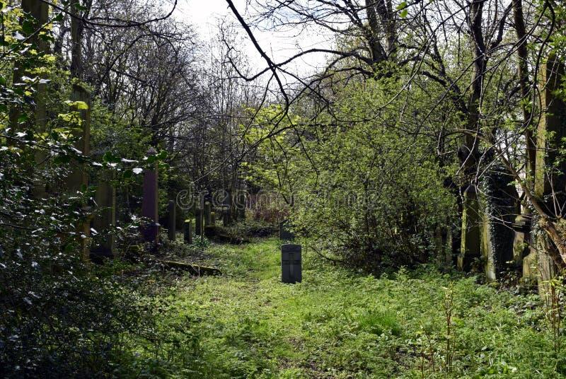 Frequentierender Friedhof und gespenstisch stockfoto