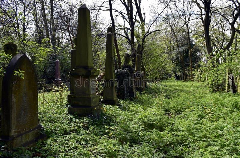 Frequentierender Friedhof und gespenstisch stockfotografie