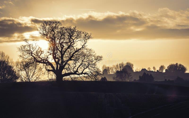 Frequentierte Sonnenuntergang-Landschaft lizenzfreie stockfotografie