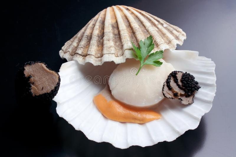 Fres raw scallop with black truffle. Fresh raw scallop and black truffle stock photo