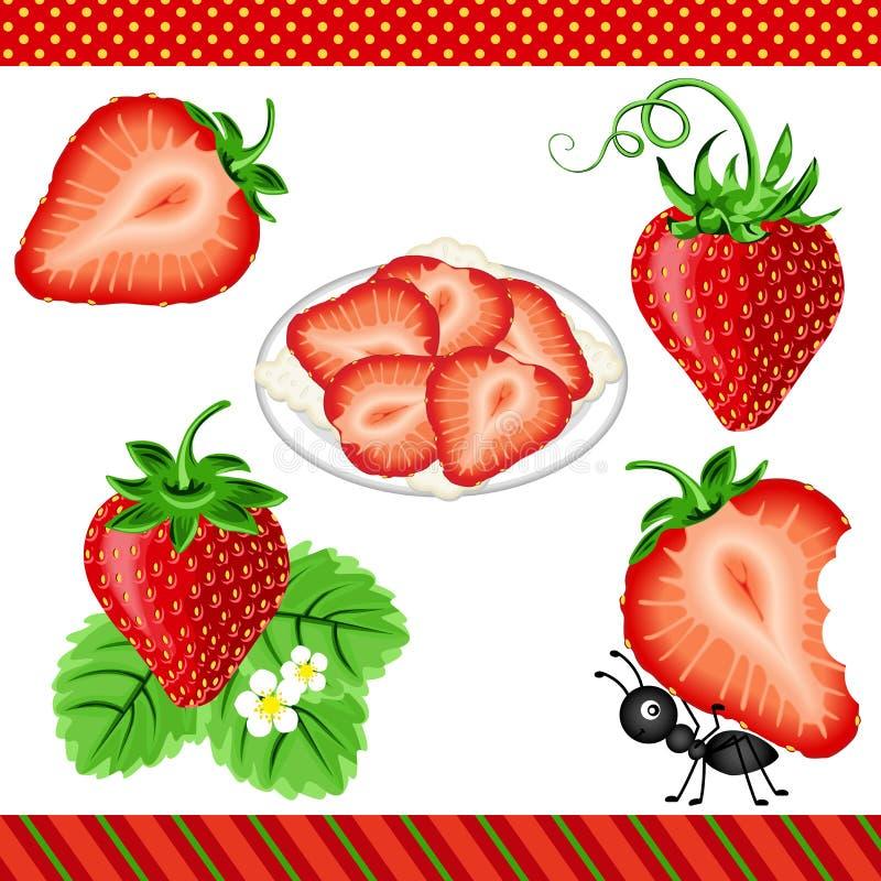 Download Fresa Digital Clipart ilustración del vector. Ilustración de vegetariano - 44855894