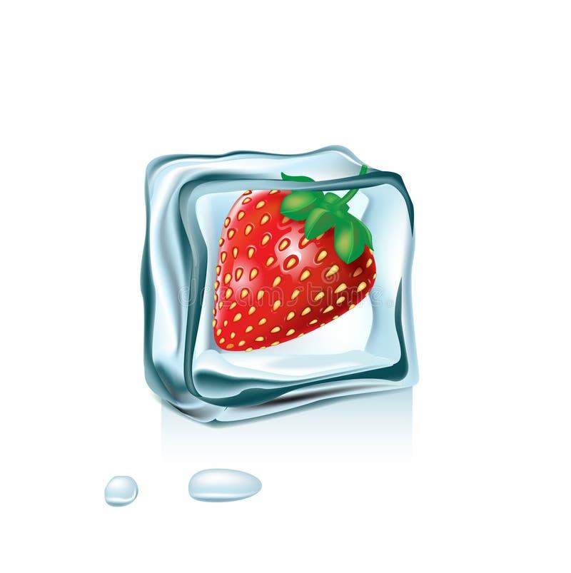 Fresa en el cubo de hielo aislado libre illustration