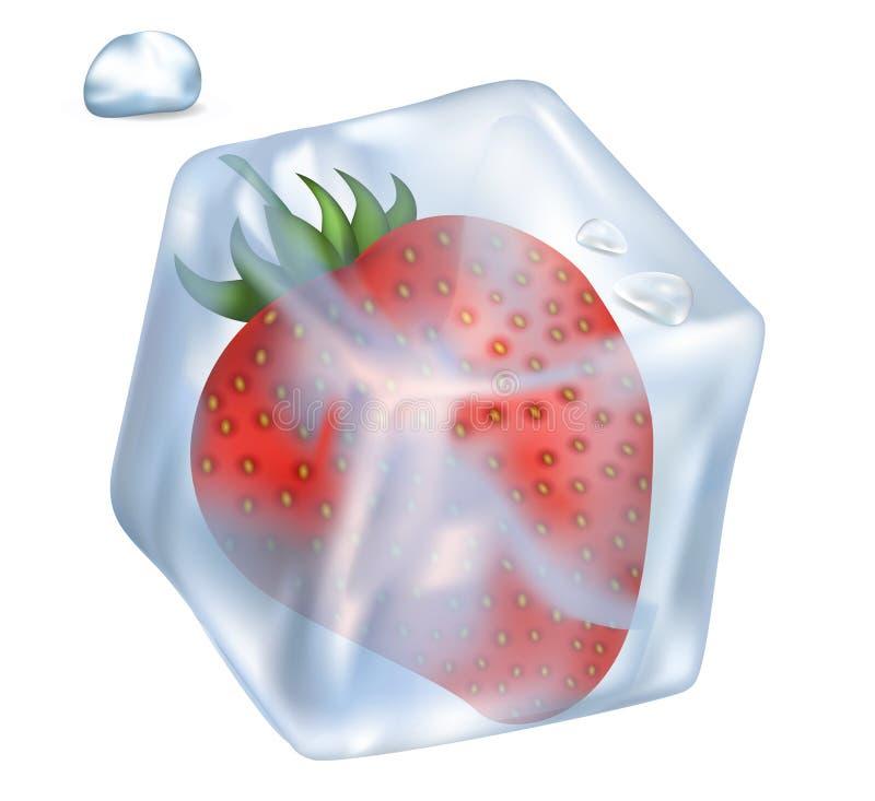 Fresa en el ejemplo del cubo y de la burbuja de hielo libre illustration