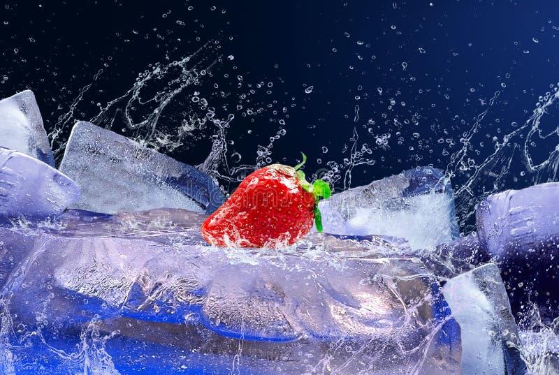 Fresa en el hielo imagen de archivo libre de regalías