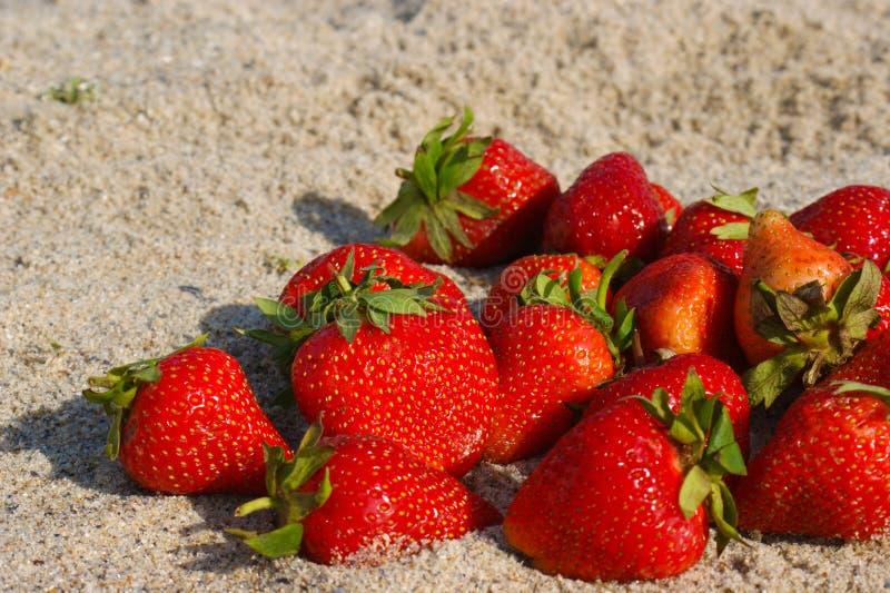 Fresa en la playa fotos de archivo libres de regalías