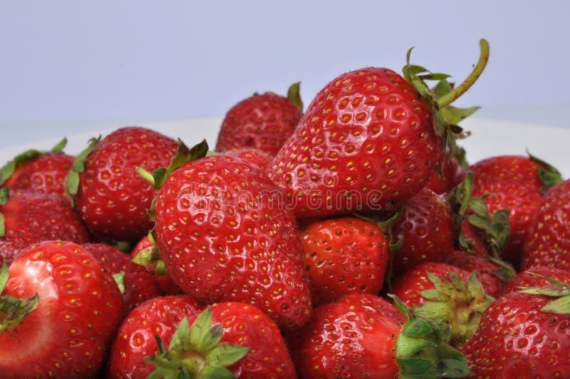 Fresa fresca de ?Red aislada en el blanco fotos de archivo libres de regalías
