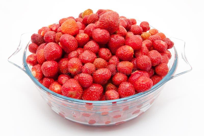 Fresa fresca roja en un cuenco aislado en el fondo blanco foto de archivo libre de regalías