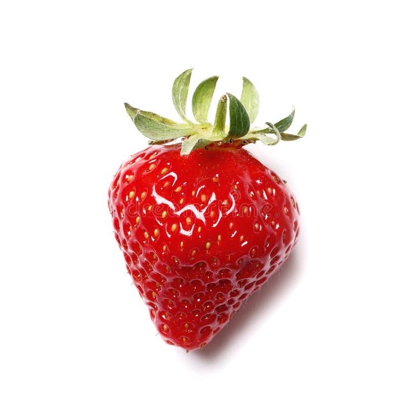 Fresa roja fresca aislada en el fondo blanco imagen de archivo libre de regalías