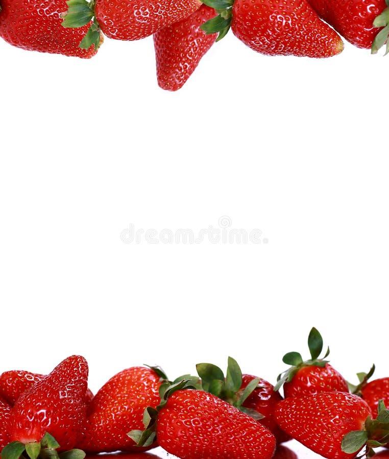 Fresas imágenes de archivo libres de regalías