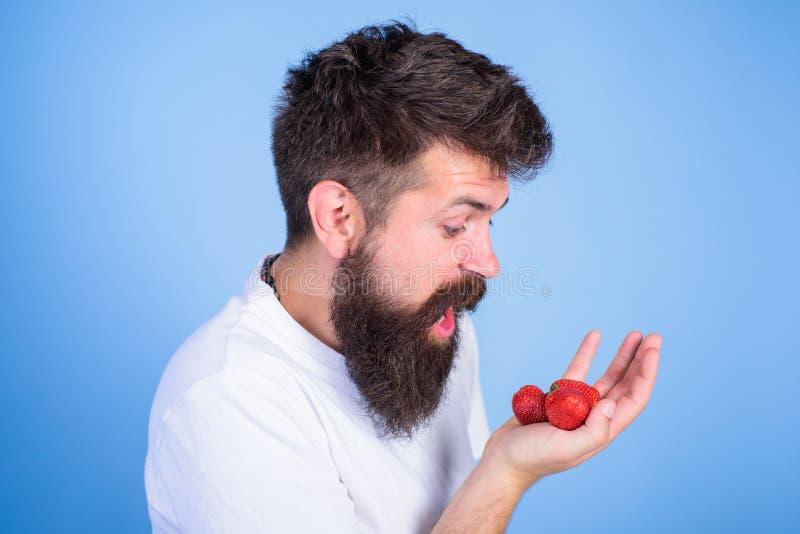Fresas barbudas de los controles del inconformista en la palma La cara codiciosa hambrienta de grito del hombre con la barba come foto de archivo libre de regalías