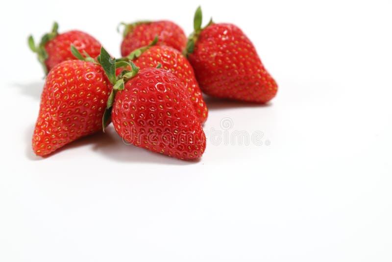 Fresas de fondo blanco foto de archivo libre de regalías