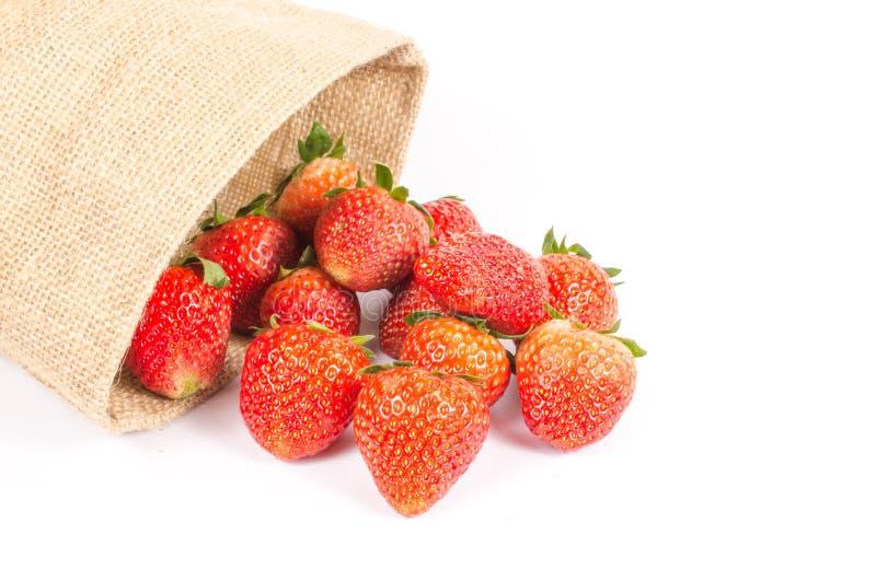 Fresas en bolso del saco imágenes de archivo libres de regalías
