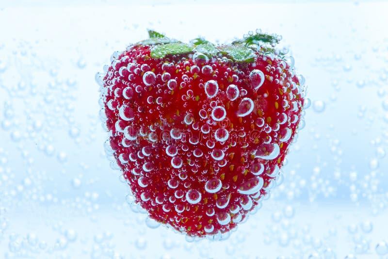 Fresas en el agua fotografía de archivo libre de regalías