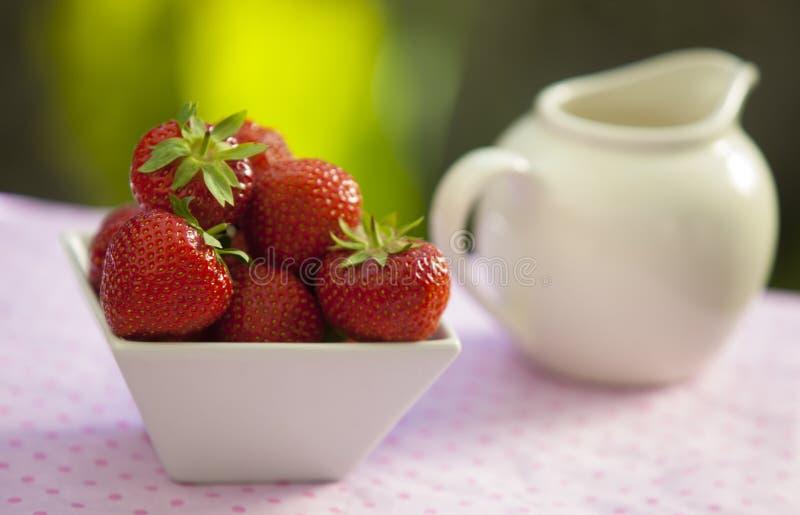Fresas en un cuenco anguloso blanco fotografía de archivo libre de regalías