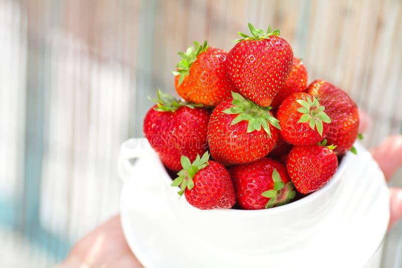 Fresas en un tazón de fuente foto de archivo
